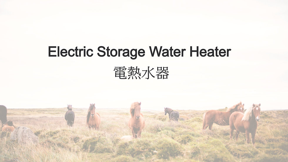Electric Storage Water Heater 電熱水器