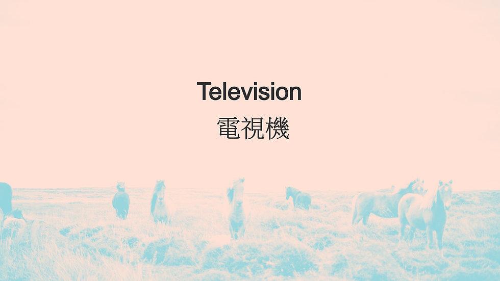 Television 電視機