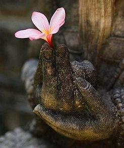 Buddha%20hand%20w%20flower_edited.jpg