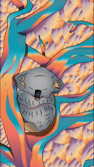 KOALA LOVE-04.jpg