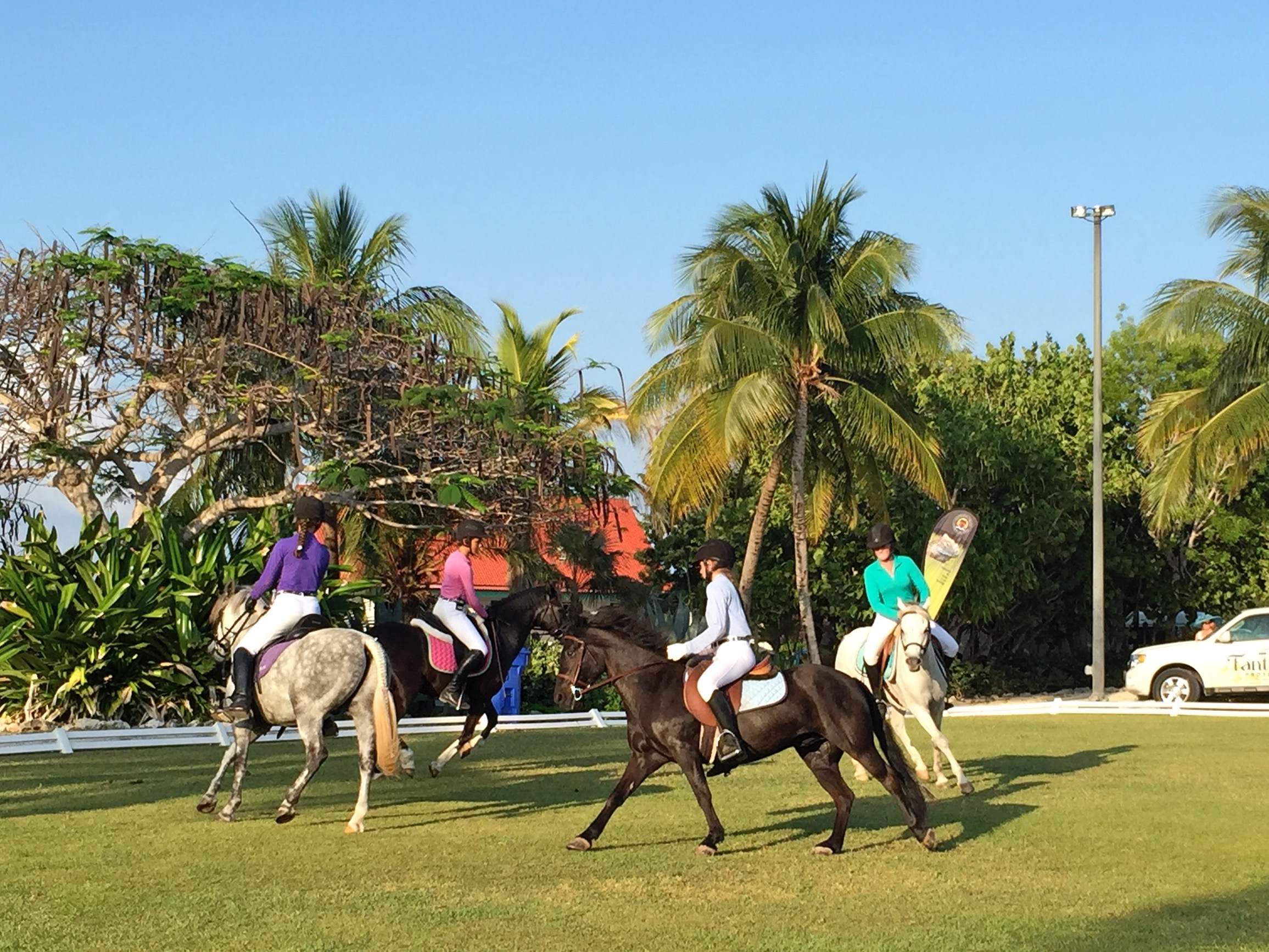 Pony Quadrille