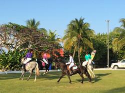 Pony Quadrille