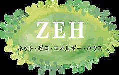 ZEH2.png