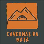 Logo Vetor.jpg