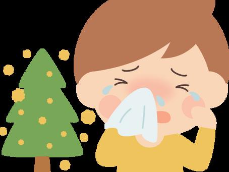 花粉症の初期療法