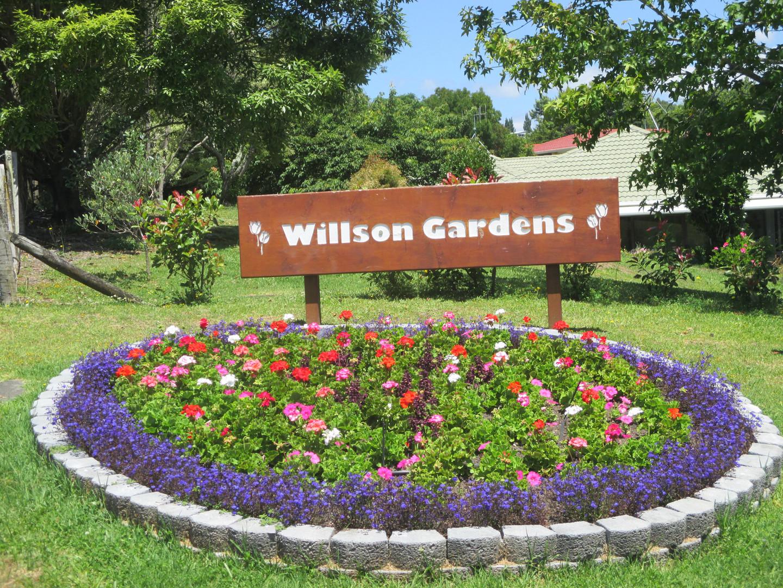 Willson Gardens upgrade 044.JPG