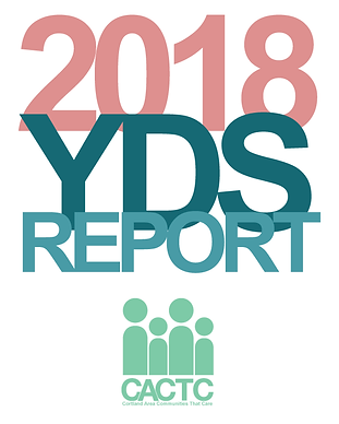 2018-YDS-Report-Final-Draft-Web.png