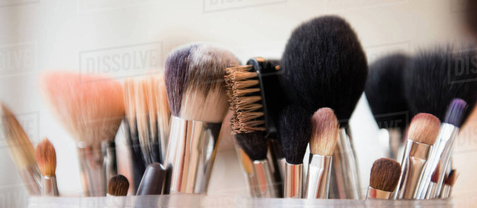 Brush Breakdown: The Brushes You Need and How To Use Them
