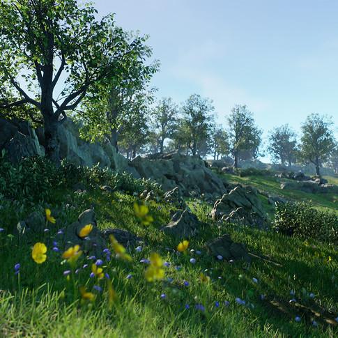 landscape_update_02.jpg