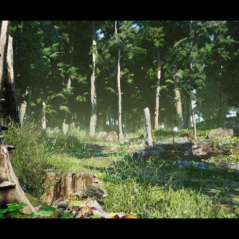 don-pham-forest-scene-c-04.jpg