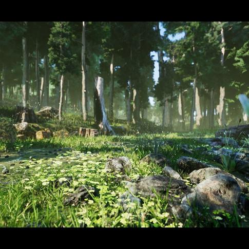 don-pham-forest-scene-c-05.jpg