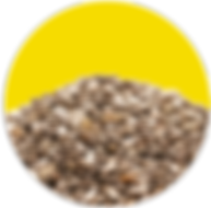 Graines de Chia.png