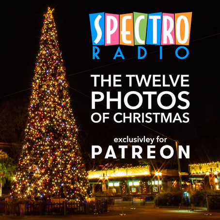 The Twelve Photos of Christmas!