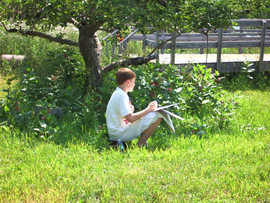Student Studying the Landscape