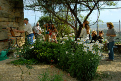 Italy Plein Air Workshp