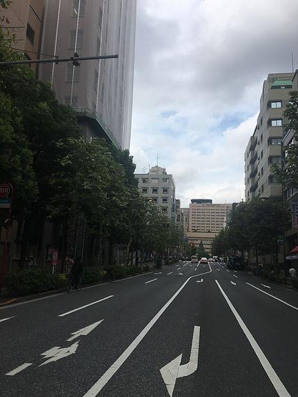 街路樹撤去前の明大通り