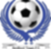 BTFC logo Dsign.png