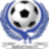 BTFC Logo.png