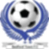 BTFC logo Dsign_edited.png