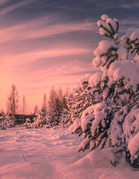 GLOWING SNOW