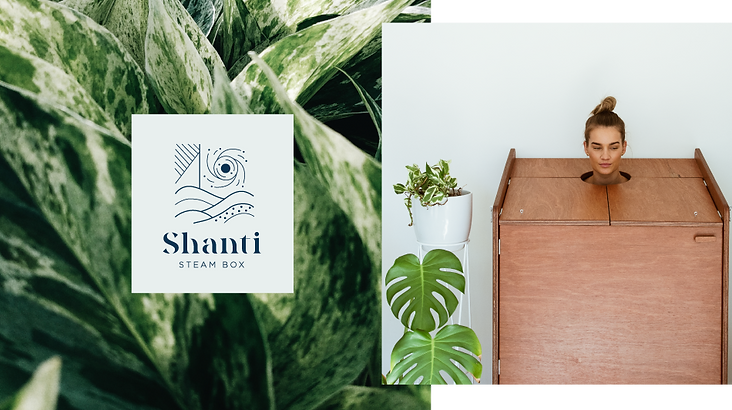 Shanti-home-page.png