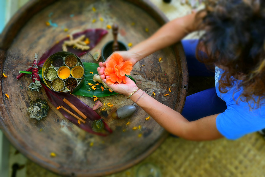Ayurveda offerings spices and herbs.jpg
