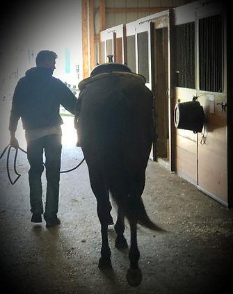 Michael Dunn Horse.jpg