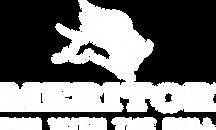 Meritor-logo-tag-vert-white-2019_FIN.png