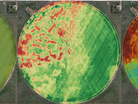 A Spotlight on the Ag-Analytics In-Field Services