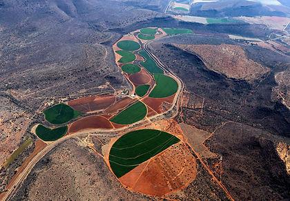Irrigation_Unsplash.jpg