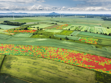 Understand Your Farm's Profitability Using ProfitLayers® Farm Reports