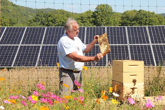A major milestone for Vermont solar's collaborative efforts to restore pollinator habitat in our state.