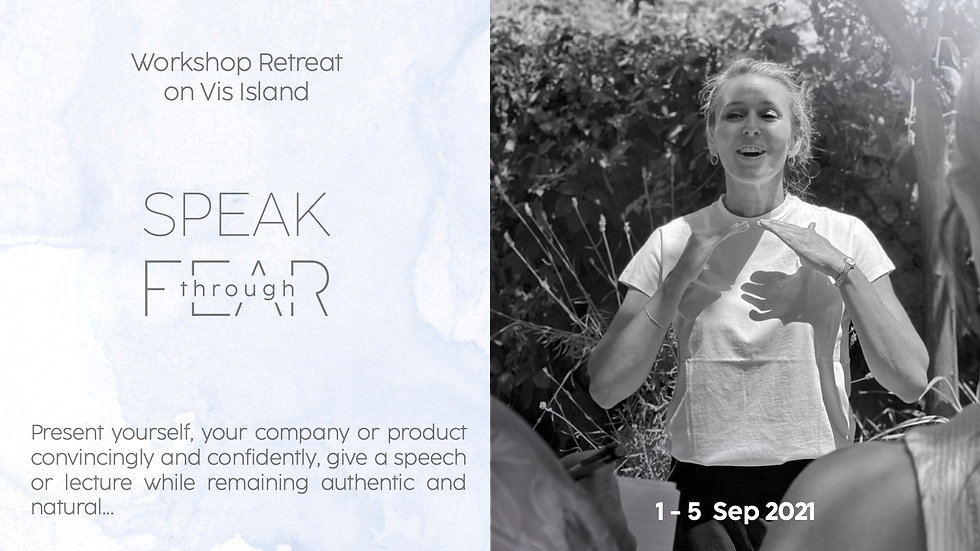 Speak Through Fear ,Vis,Brochure 1.jpg