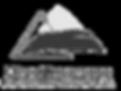 Direct Insurance logo
