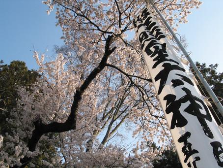 熊野神社の春