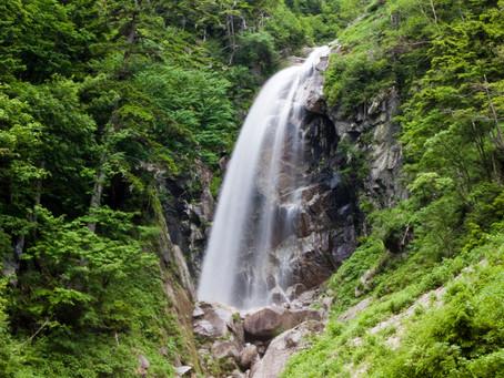 梅雨の伊勢滝
