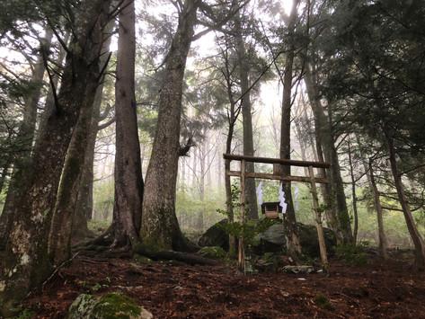 雨の中のぶなの森例祭