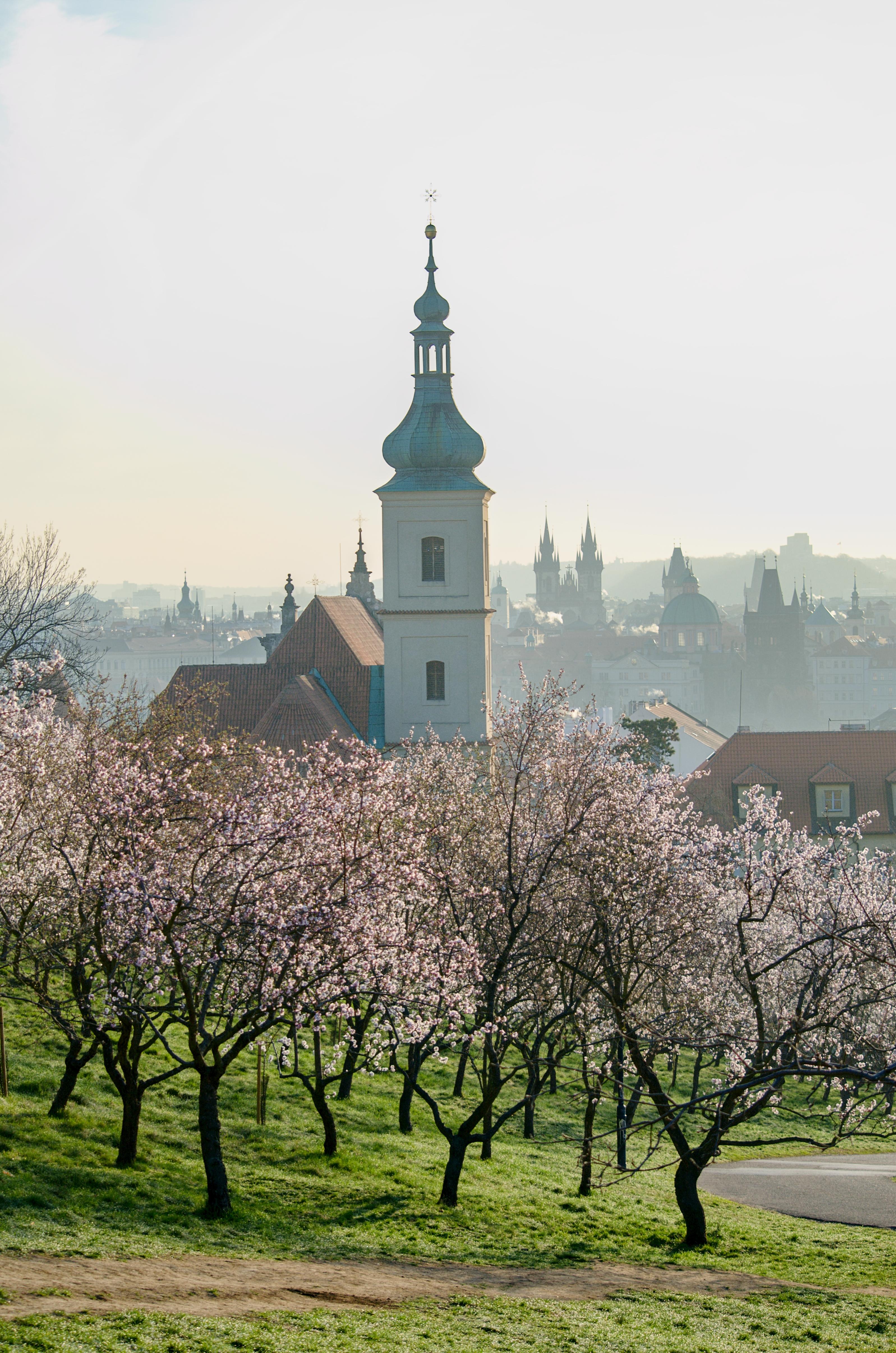 Kostel Panny Marie Vítězné