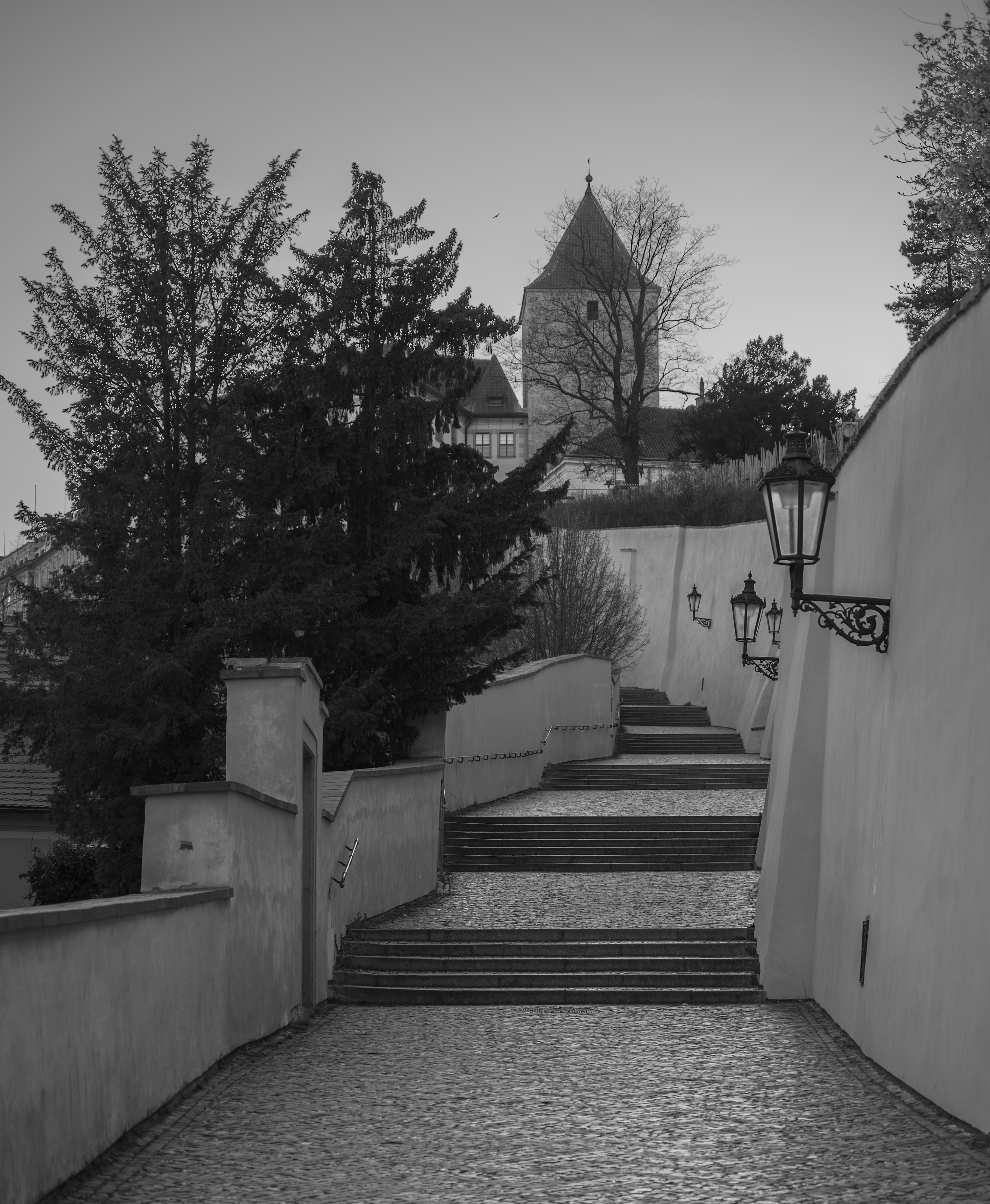 La Tour noire, les escaliers du Vieux Château