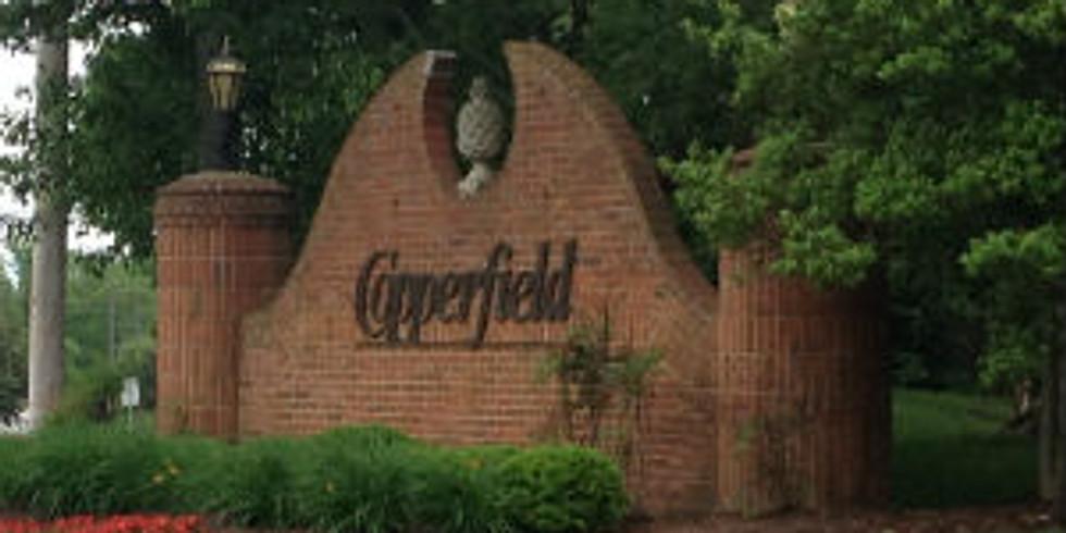 Copperfield Subdivision 40245