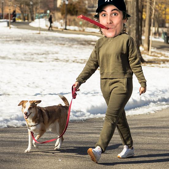 I'll walk your dog