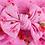 Thumbnail: Pink Floral Bow Headband