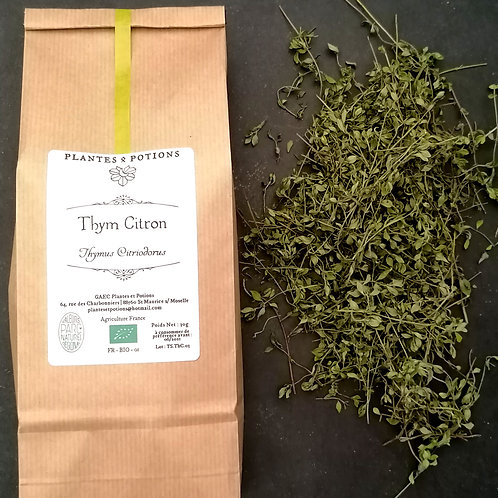 Thym Citron | Thymus Citriodorus