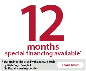 Wells Fargo - 12 Month Financing Banner.