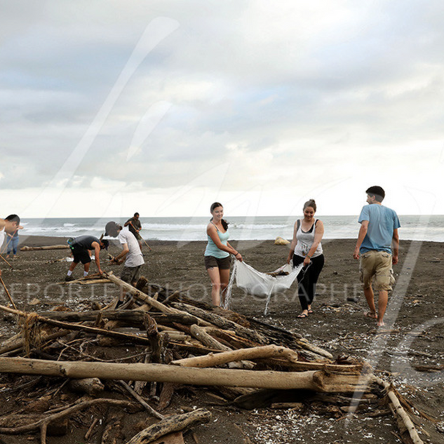 High school students from San José come every year to clean the beach to facilitate access to turtles