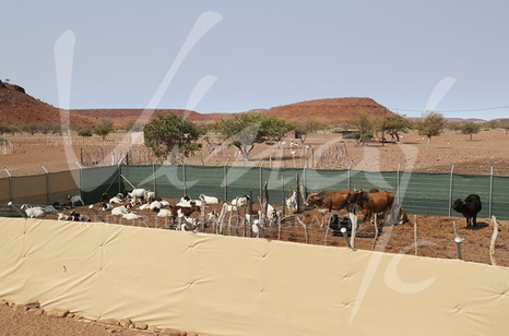New generation Kraal, much more suitable, much taller and more solid ... The herd will be sheltered for the night