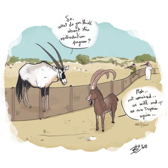 oryx-ibex-24X24-english.jpg