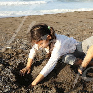 If the babies go out at too hot an hour during the day, the villagers help them get out of the sand but bring them directly to the water. This will prevent babies from dying before arriving at the ocean