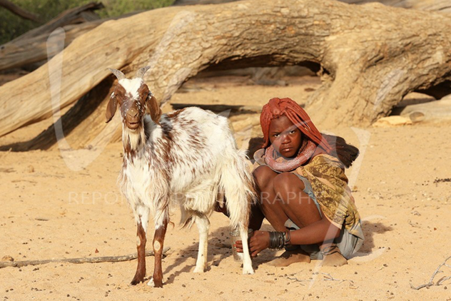 "The Himbas are an ethnic group 400 years old Their name means ""Beggar"" in Swahili They live in the Kunéné and are nomadic herders"