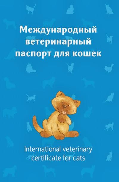 karpenko_veterinary_passport_cats_title